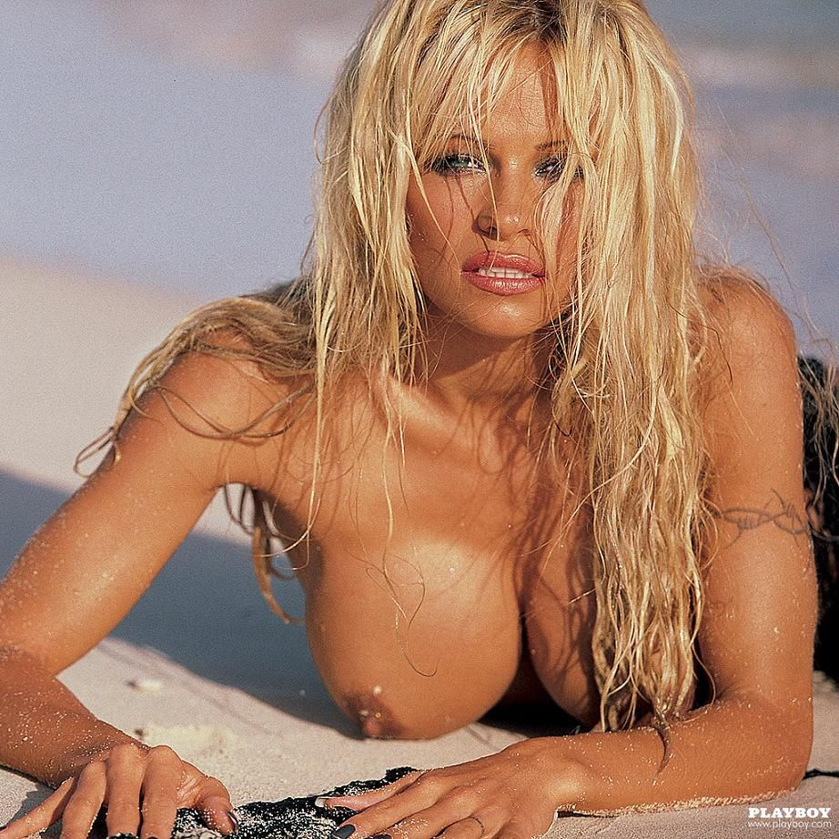 Nude chat of pamela anderson, tits at works